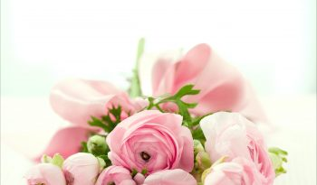 cute-flowers-images-25